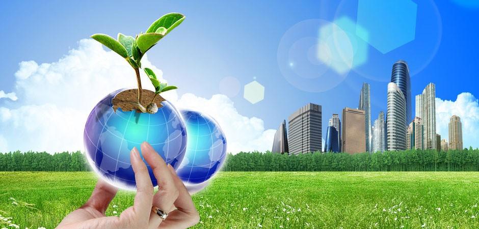 创新与环境我们将探索生命奥秘